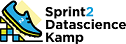 Sprint2DS